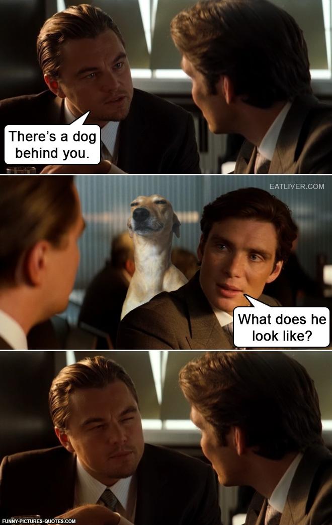 inception-dog
